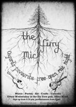 Firry Mic flyer