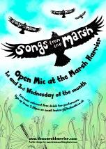 Marsh Harrier poster